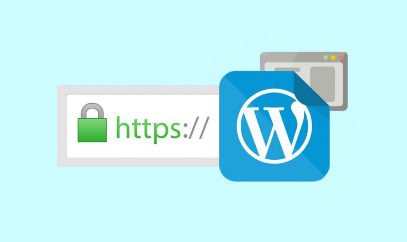 SSL w WordPressie