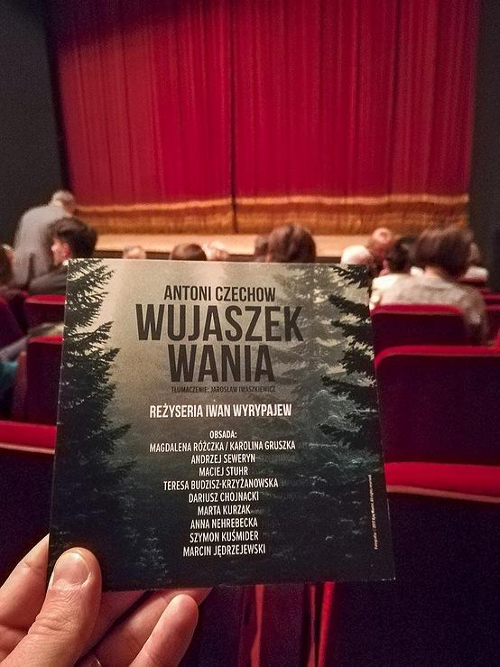 Opracowanie graficzne do spektaklu Wujaszek Wania w reżyserii Iwana Wyrypajewa_11